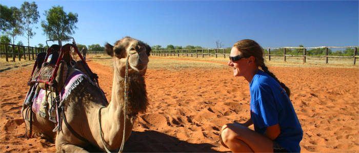 A camel ride in the Northern Territory