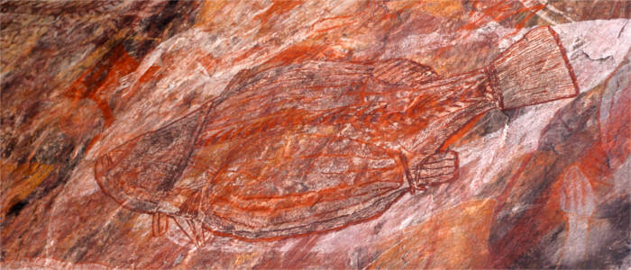 Paintings by the aborigines - Northern Territory