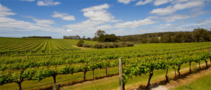 Wine-growing region in South-Western Australia