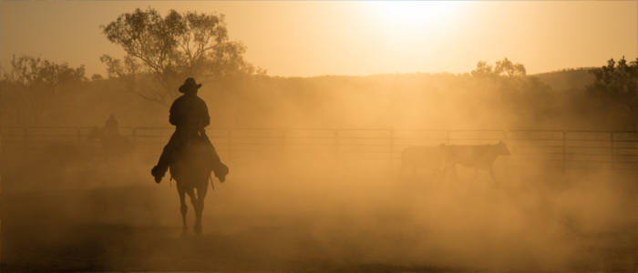 Horseback riding in Western Australia