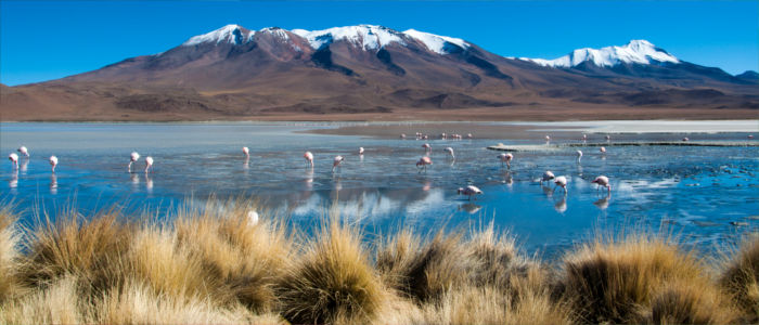 Bolivia In The Isolation Of Nature Travelmyne Com