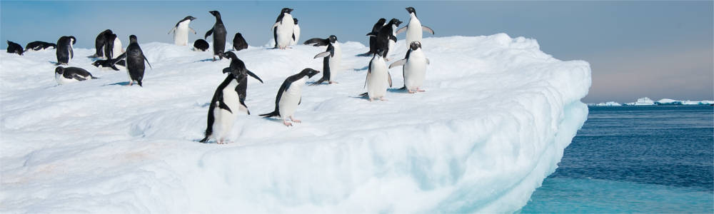 Travelling to Antarctica