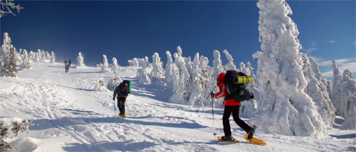 Winter sports in the Giant Mountains