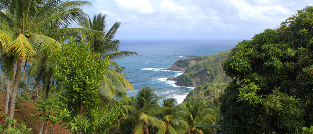 The Caribbean tropical island of Dominica
