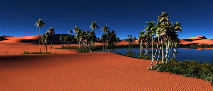 Oasis in the Egyptian desert