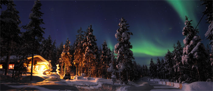 Northern lights over Finland's forests