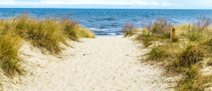 Sand dune at the Baltic Sea