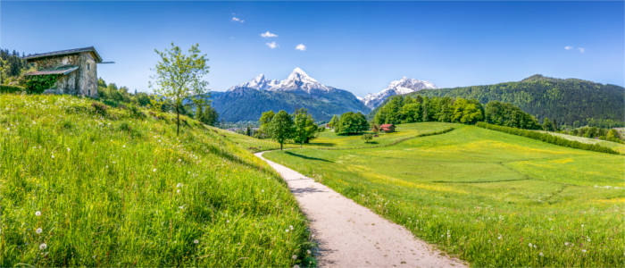 Meadows and pastures in the Free State of Bavaria