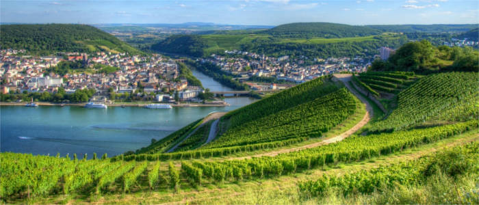 Wine-growing region in Hesse