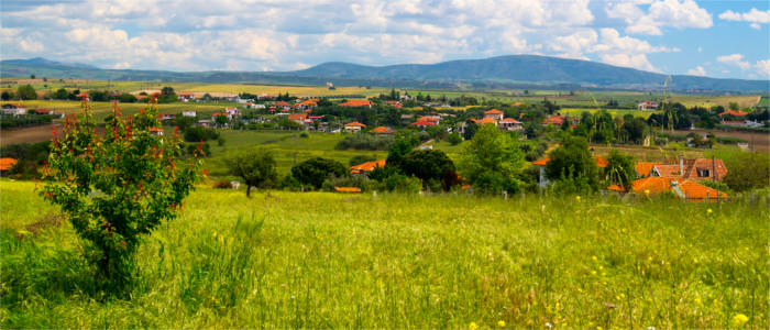 Green landscape on Halkidiki