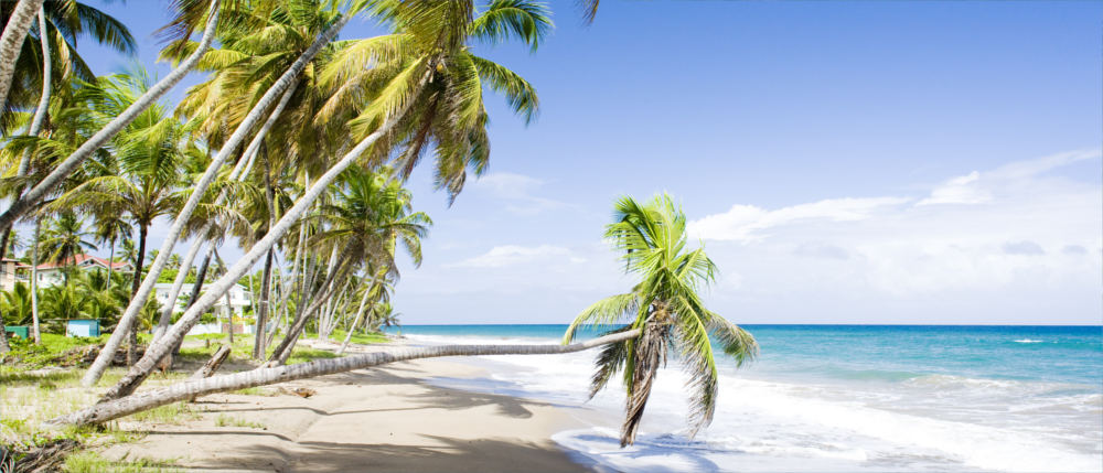 Grenada's Caribbean dream beaches