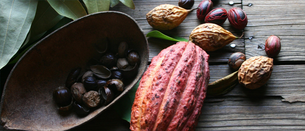 Nutmeg and cocoa from Grenada