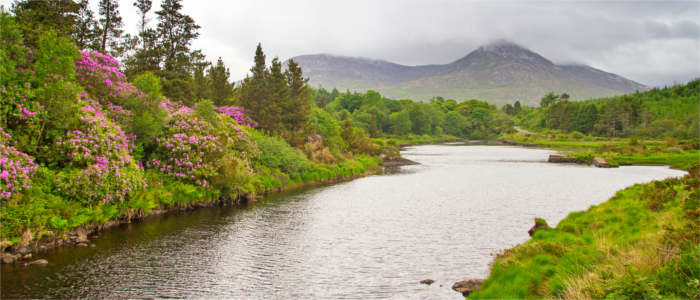 The Mountains of Connemara in Irland