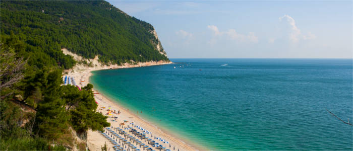 a dream beach in Marche