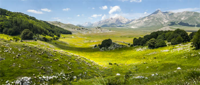 High plateau in the national park in Abruzzo