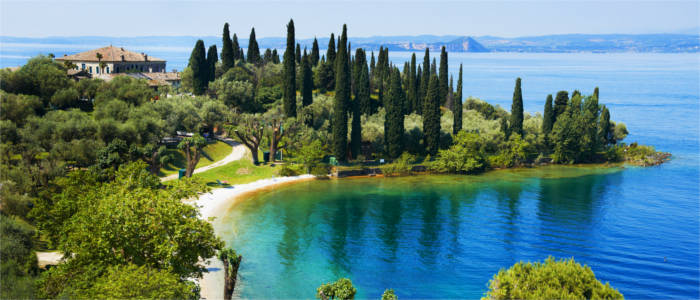 Mediterranean vegetation at Lake Garda