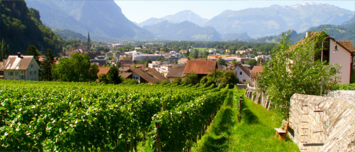 Wine culture in Liechtenstein