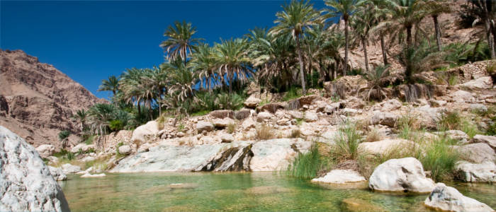 Oases in Oman