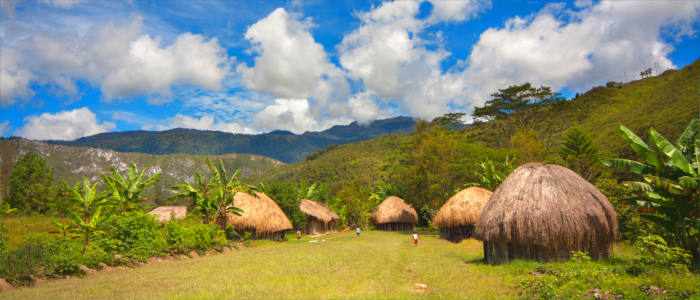 Traditional huts in Papua New Guinea