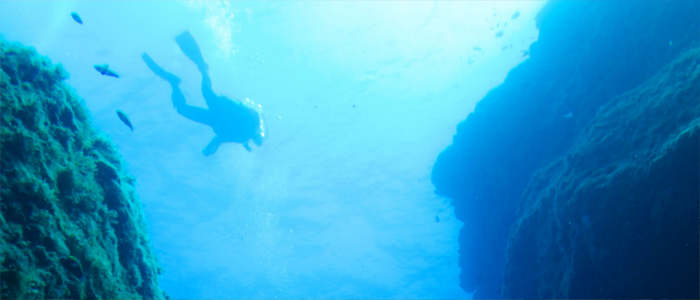 Diving in front of the Azores