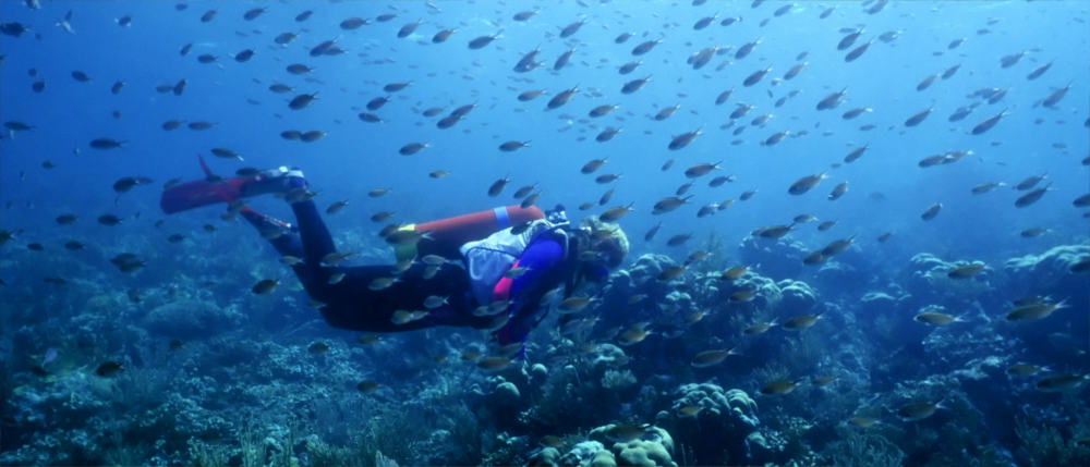 Diver in Saint Vincent and the Grenadines