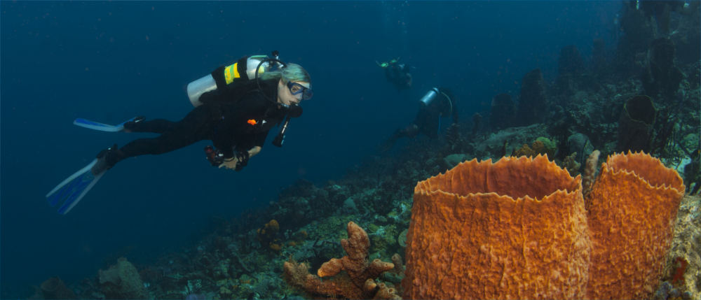 Diving in Saint Lucia