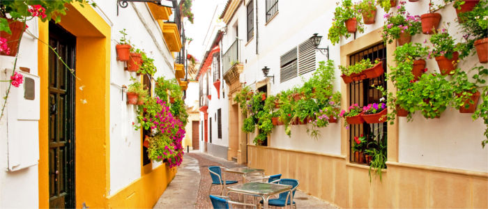 Alley and houses in Córdoba - Andalusia