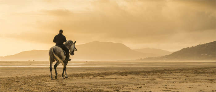 Horseback riding at the beach of Tarifa