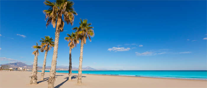 Beach at the Costa Blanca