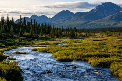 A typical landscape in Alaska