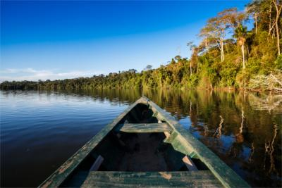 Natural landscape at the Amazon River