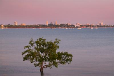 Panorama of Darwin