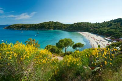 Coastal landscape on Elba