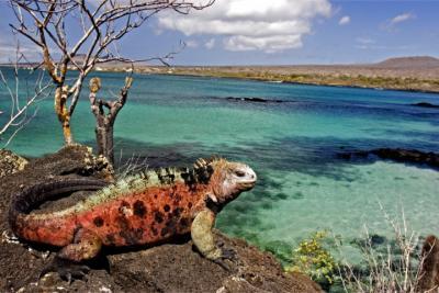 Travel destination Galápagos Islands