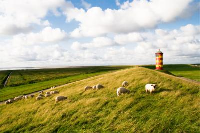 Landscape in East Frisia