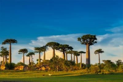 Country Madagascar