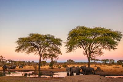 Country Zimbabwe