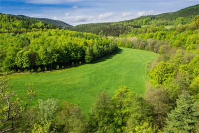 Green Thuringia