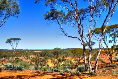 Scenery in Western Australia
