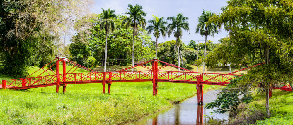 Suriname - bridges in Paramaribo