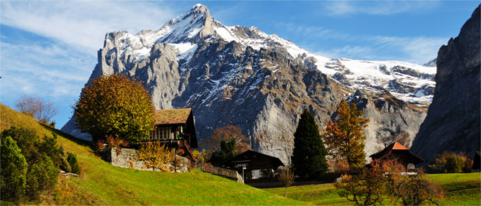 Bernese Alps and houses