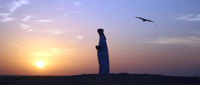 The falconers in the United Arab Emirates